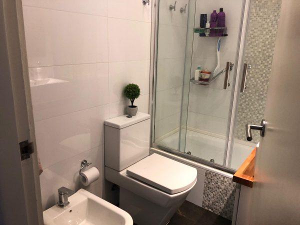 apartamento punta carretas baño